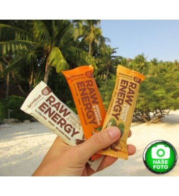 Bombus Raw Energy Tyčinka Coconut Amp Cocoa 50g Greenstore Cz